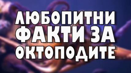 Любопитни факти за октоподите