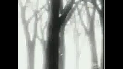 Bleach Amv - Body Crumbles