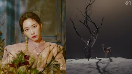 (превод) Taeyeon - Four Seasons