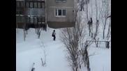 улични помияри налитат на жена в Русия