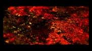 * Гръцка балада 2013 * [превод] Живота си да продължа / Stelios Rokkos - Zoi na mpo