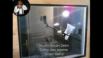 Sinan Sakic 2011 Studio Bojan Zekic Demo