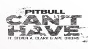 Pitbull - Cant Have ft. Steven A. Clark & Ape Drums