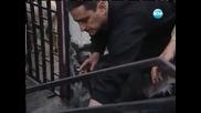 Разследване 06.10.2013 - Как се обсебват кози, за точене на евро пари