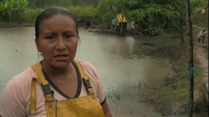 Шеврон осъден в Еквадор за 9,5 милиарда долара