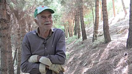 One-man forest! 71-y/o turns landfill into woodland by himself in Turkey
