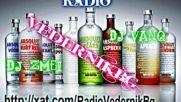 Radio Vedernik Bg Dj Zmei