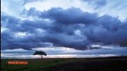 Bojan Marovic Fotografija (2011)