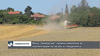 """Фонд """"Земеделие"""" приема заявления за компенсиране на загуби от пандемията"""