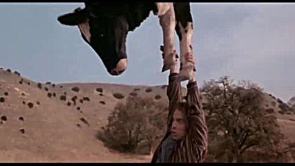 Сцена от филма Луда напревара
