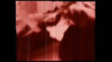 Fecal Body Incorporated - Bizzare Body Modification