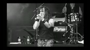 Stormzone - Wasted Lives * Death Dealer * 2010