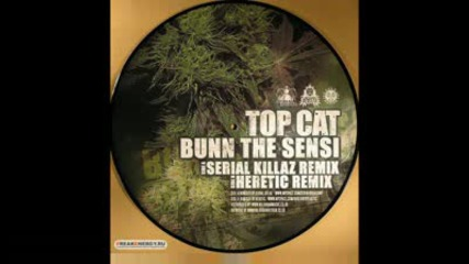 dj heretic ft. top cat - cat bunn the sensi