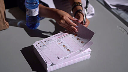 Spain: Expats queue up to vote in Ecuadorian presidential run-off in Madrid