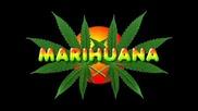За или против марихуаната ?