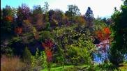 Kitaro - Spiritual Garden - Quarryhill Botanical Asian Garden