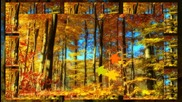 ⊱•╮ Есен ... ... ( с поезията на Пепа Николова) ... (music Fariborz Lachini) ... ...⊱•╮