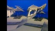 На Море 2011г. - Елените :]