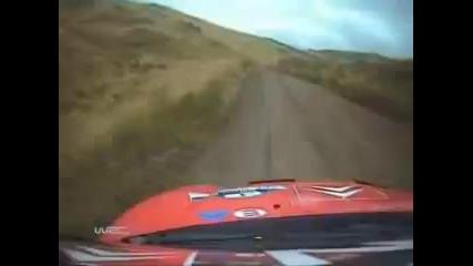 Рали кола удря крава.