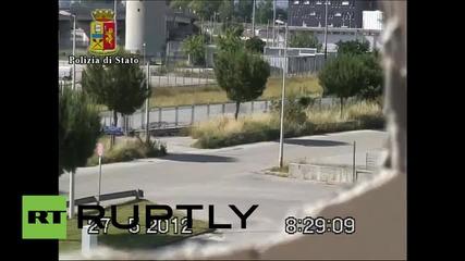 Полицията в Италия преследва коне от нелегални гонки на мафията