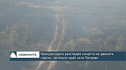 Прокуратурата разследва смъртта на двамата горски, загинали край село Петрово