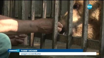 Пренасят мечките от Русе в резервата в Белица