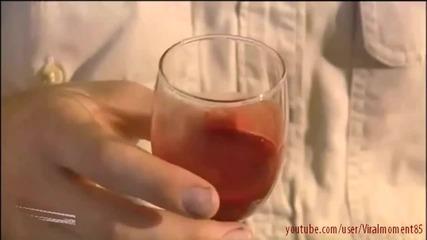 Какво причинява змийската отрова на кръвта