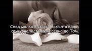 I love you forever !!~ Епизод 26