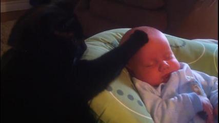 Сладка котка успокоява плачещото бебе