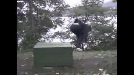 FsC!  ILK0 Amazing  Kongs!