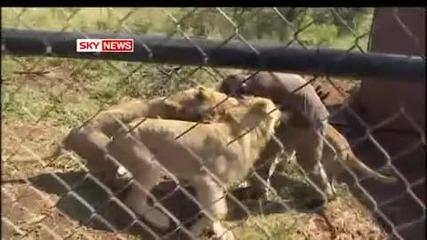 Кевин Ричърдсън - говорещия с лъвове