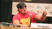 Hulk Hogan Fired by WWE Over 'Racial Tirade'