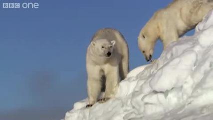 Bbc - Tопeнето на ледовете в Антрактида