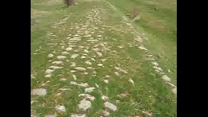 Римски Път Край С. Долни Главанак