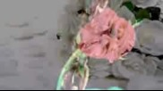 Leonie Casanova - Little Feeling