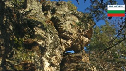 Пашови скали - там започват Родопите