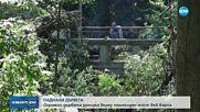 Огромни дървета рухнаха върху пешеходен мост във Варна