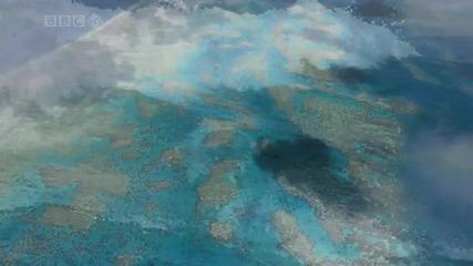 Прекрасен океан [hd]