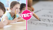 ТЕСТ: Можеш ли да се справиш с този входящ тест по български за 6 клас?