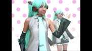 Vocaloid Mty - Aimai Net Darling (live Action)