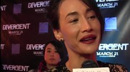 Maggie Q and Mekhi Phifer talk what makes them Divergent