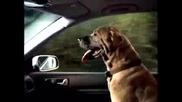 Реклама - Volkswagen Golf Gti 1.8t