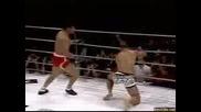 BRUTAL  MMA