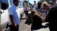Маймунска му работа