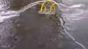 Дънни електрически подводни помпи и с фотоволтаично захранване за обръщане и аериране на рибарници