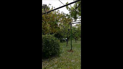 Градушка унищожи вилната зона във Враца