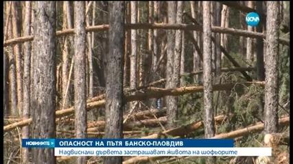 Опасност на пътя Банско-Пловдив