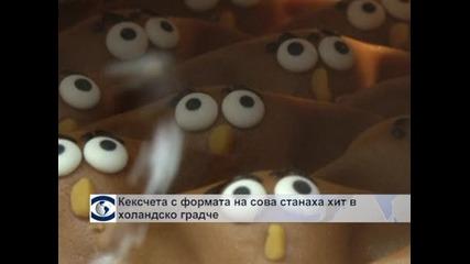 Кексчета с формата на сова станаха хит в Холандия