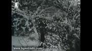 Мустафа Чаушев - Търся щастието (1973)