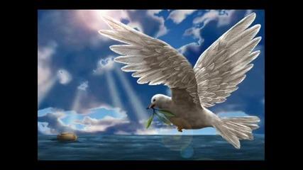Емилия - Птица бяла